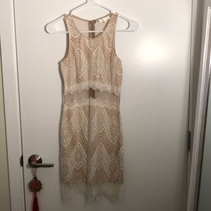 White Lace and Sheer Mesh Dress